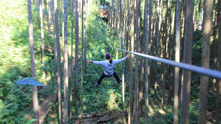 High Ropes Adventure with Zip-line